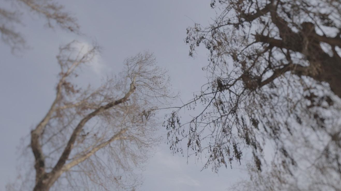 Screen Shot 2015-01-11 at 2.15.42 PM